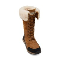 Women's Adirondack III Tall Boots in Brown