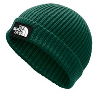 Logo Box Cuffed Beanie in Green
